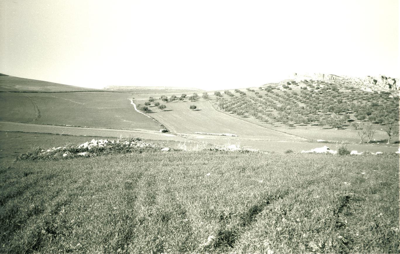 Un sito: DU348