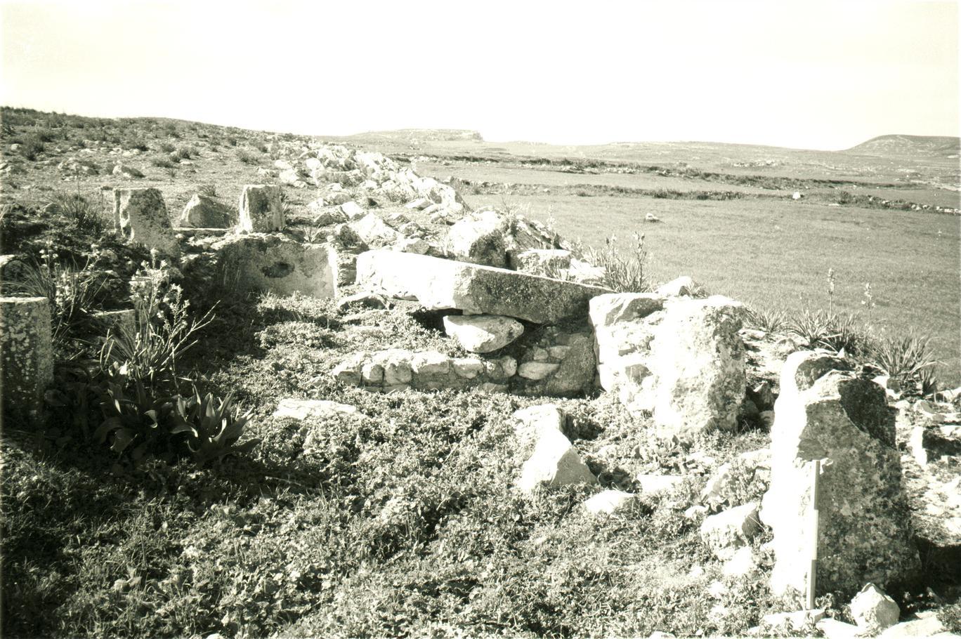 A site: DU522