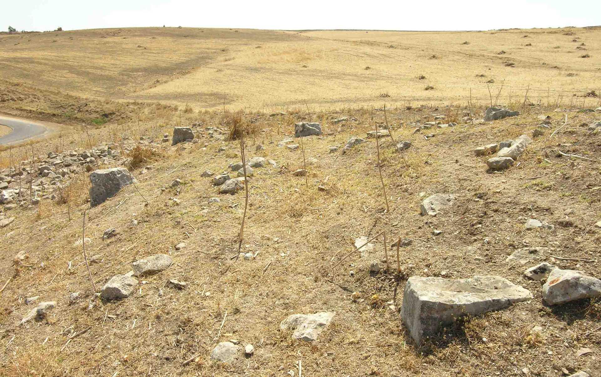 A site: DU590