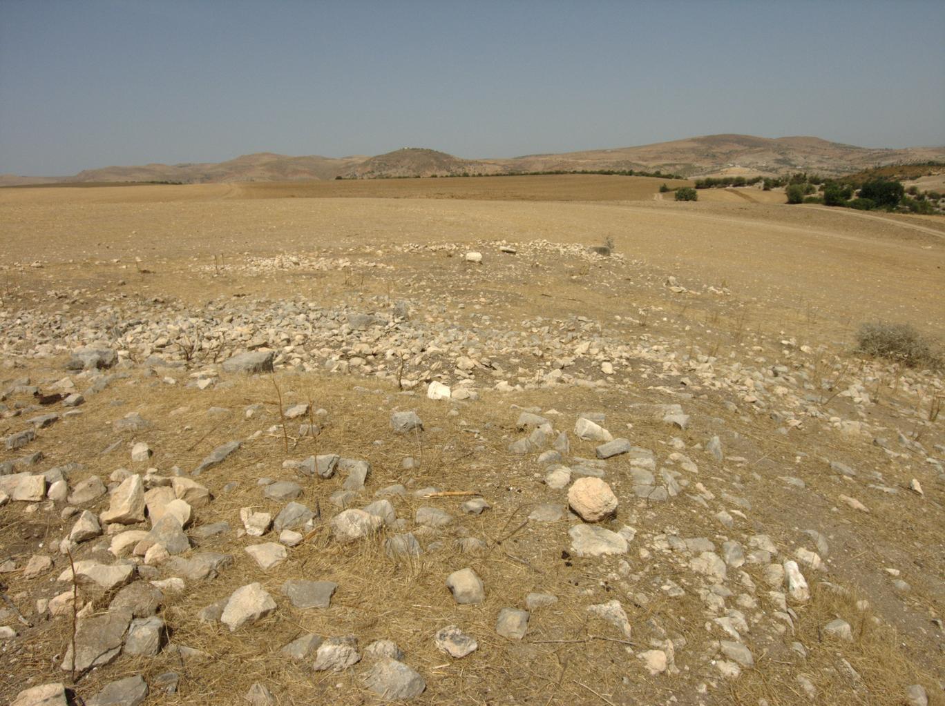 A site: DU634